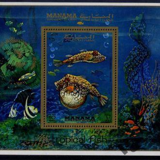 Манама. Рыбы (блок) ** 1971