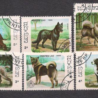 Лаос, 1986г., фауна, собаки