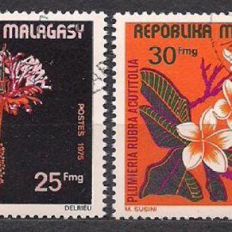 Мадагаскар, 1975г., флора, цветы