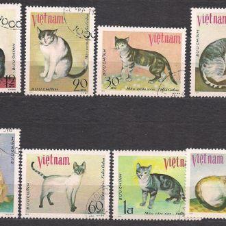 Вьетнам, 1979г., фауна,  кошки
