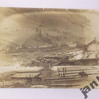 Гуцульщина, 1920р, лесосплав.