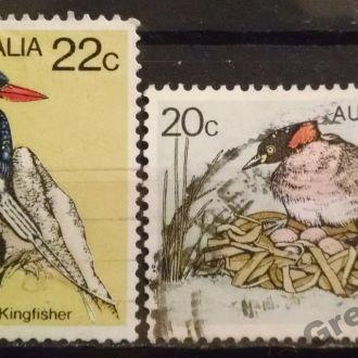 марки Австралия фауна птицы с 1 гривны