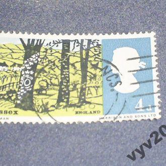 Англия-1966 г.-Деревья, ландшафт