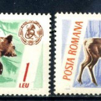 Румыния. Животные. 1965 г.