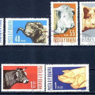 Румыния. Домашние животные (серия). 1962 г.
