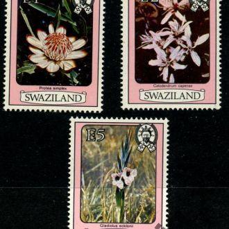 Свазиленд. Цветы (концовка) 1980 г.**