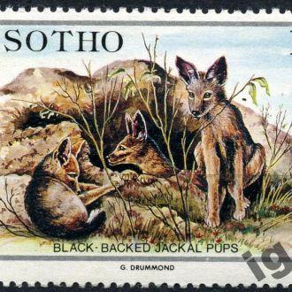Лесото. Животные (концовка) 1984 г.**