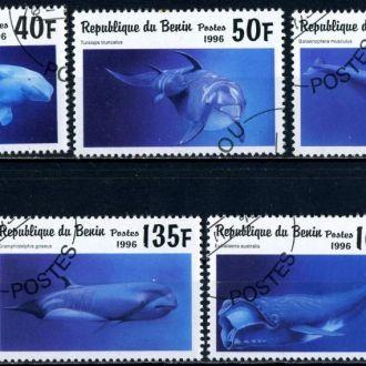 Бенин. Морские животные (серия без 1 м.) 1996 г.