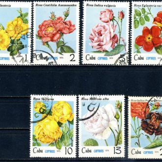Куба. Цветы №2 (серия) 1979 г.