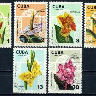 Куба. Цветы №2 (серия) 1974 г.