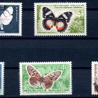 Мадагаскар. Бабочки. Природа 1960**