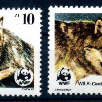 Польша. Волки (серия)** 1985