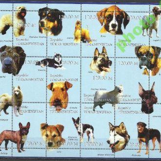 Туркменистан 19?? фауна собаки 12м.**