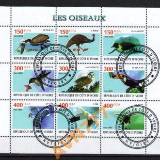 Кот-д'Ивуар 2009 Птицы Колибри Сова Тукан лист
