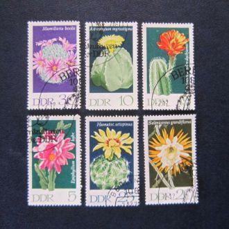 6 марок ГДР кактусы