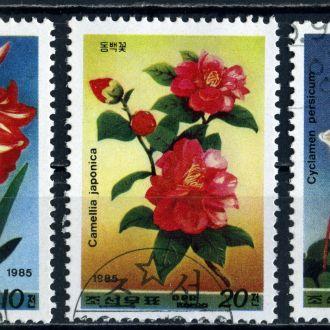 КНДР. Цветы (серия) 1985 г.