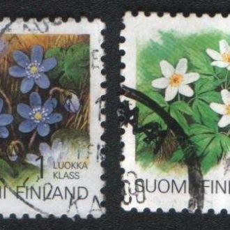 Финляндия. Цветы, флора