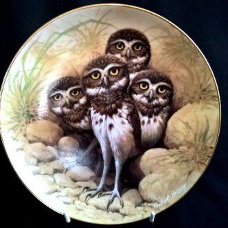 Тарелка  Nestling Owlets Птенцы Совы