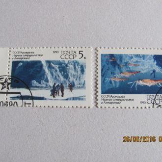 ссср антарктида 1990 гаш
