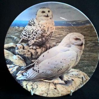 Тарелка WEDGWOOD *Snowy Owls - Снежные Совы*