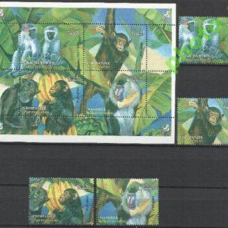 Иран 2004 фауна обезьяны шимпанзе 4м.+бл. **