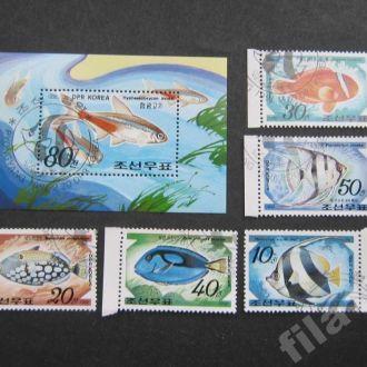 блок+5 марок Корея 1991 рыбы