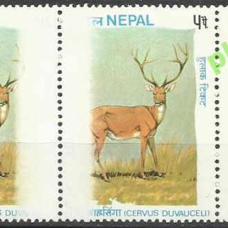 Непал 1975 фауна олень 2м.**