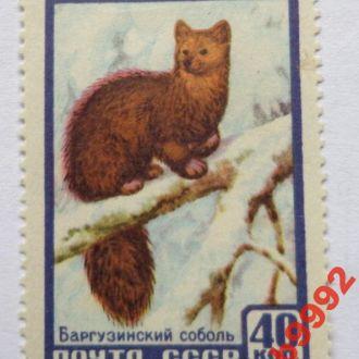 Соболь . СССР чистый 40 коп 1957 г