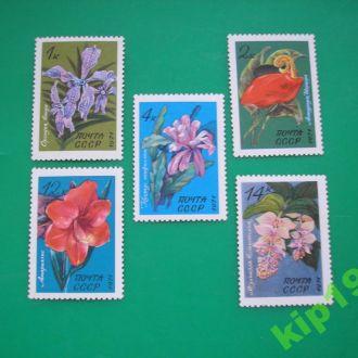 СССР 1971 Тропические растения. флора  MNH