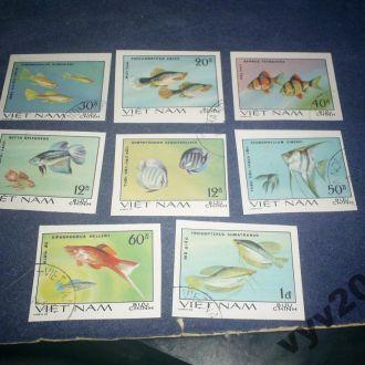 Вьетнам-1981 г.-Рыбы (полная) б/з 11 евро