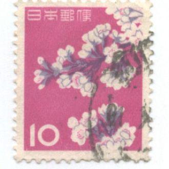 Япония цветы флора