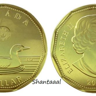 Shantaaal, Канада 1 доллар Полярная гага, 2012 г.
