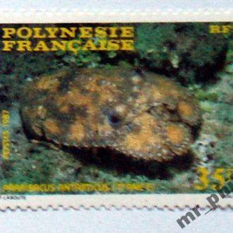Французская Полинезия - Краб Богомол