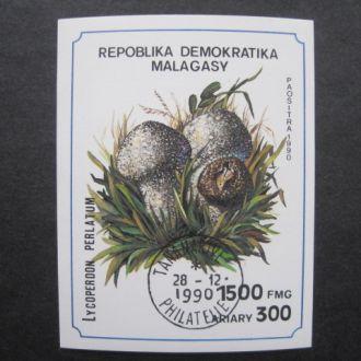 Мадагаскар   1990   lux   Грибы