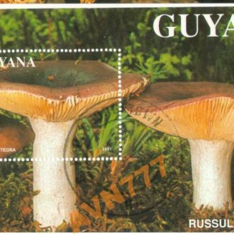 Гайана 1991 Флора Грибы блок 19 евро