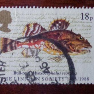 Великобритания,рыбы,1988год