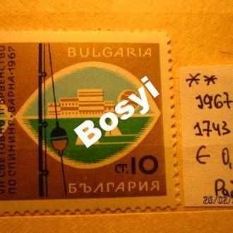 Болгария  РЫБАЛКА