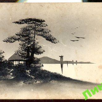 Россия ПК 1916 Япония природа