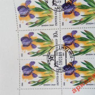 марки-СССР   с 1 гр 1986г-Цветы