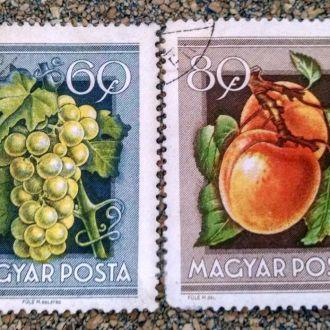 марки Венгрия флора ягоды 2шт