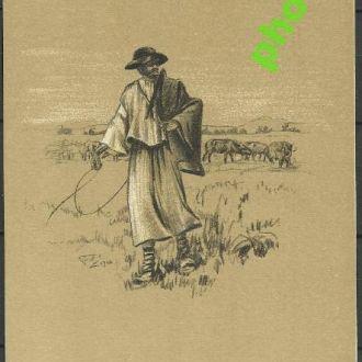 Украина 1935 ? Закарпатье Пастух буйволов из Сальд