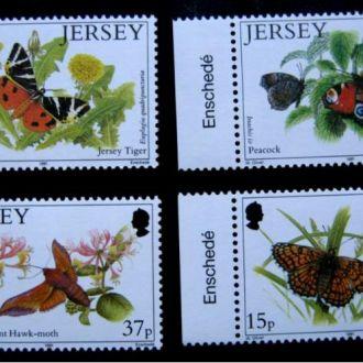 !! насекомые бабочки   JERSEY