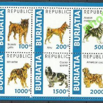 Россия Бурятия 1996 фауна собаки 6м.Клб**
