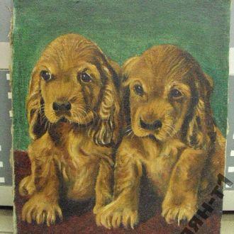 картина собаки щенки 1963 год