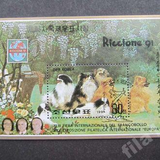 блок Корея 1991 собаки