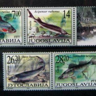 фауна рыбы югославия