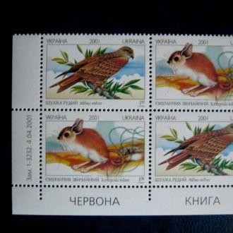 Украина фауна птицы