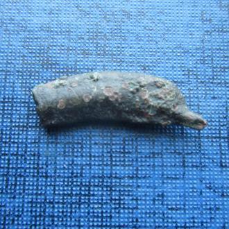Монета дельфин Ольвия 3-й век до н. э. №5