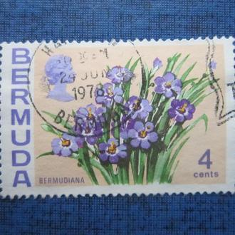 Марка Бермуда 1978 флора цветы гаш