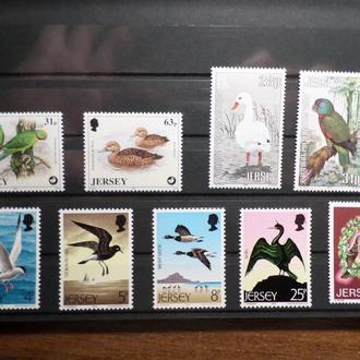 Джерси фауна птица подборка КЦ=8,7м